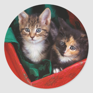 Christmas Kittens Classic Round Sticker