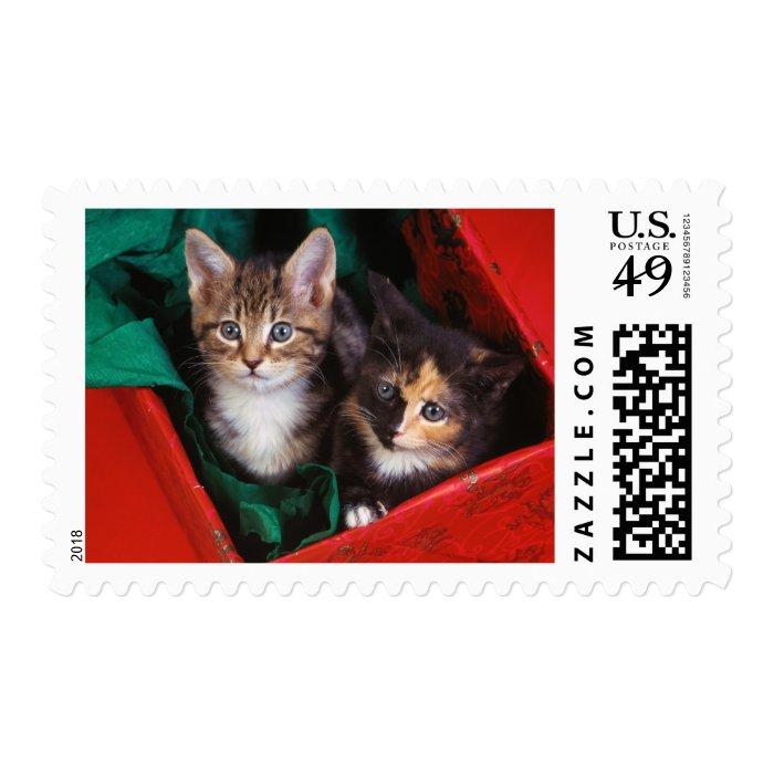 Christmas Kittens Postage Stamp
