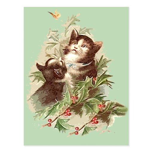 Christmas Kittens with Holly on Holiday Cards Postcards