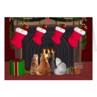 Christmas kitties card