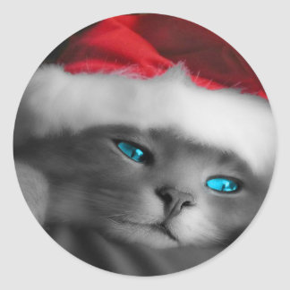 Christmas Kitty, Blue eyes Classic Round Sticker