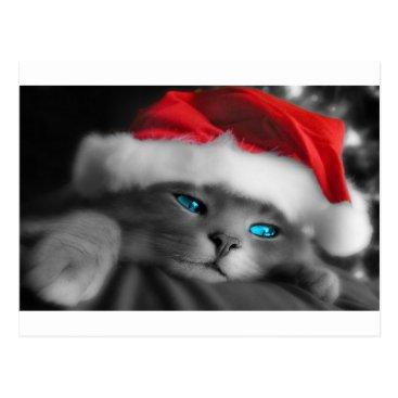 Christmas Themed Christmas Kitty, Blue eyes Postcard
