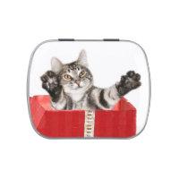 Christmas kitty hug jelly belly tin