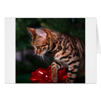 Christmas Kitty Photo (Domestic Bengal Cat) Card
