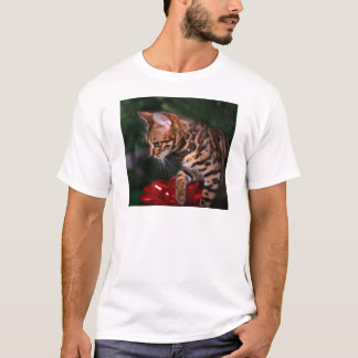 Christmas Kitty Photo (Domestic Bengal Cat) T-Shirt