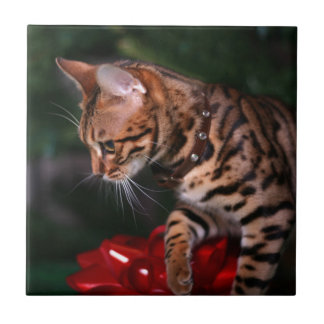 Christmas Kitty Photo (Domestic Bengal Cat) Tile