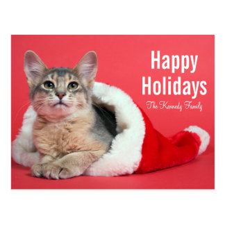Christmas kitty postcard