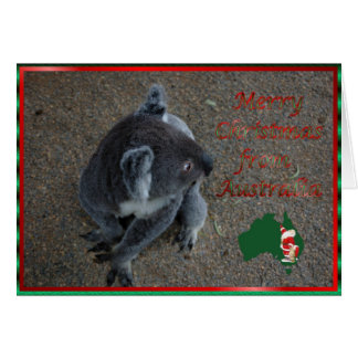 Christmas koala Australian Christmas Xmas animal Card