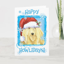 Christmas Komondor Holiday Card