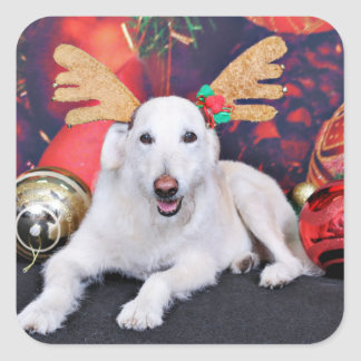 Christmas - LabraDoodle - Izzy Square Stickers