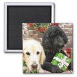 Christmas - Labradoodle Miller - Golden Retriever 2 Inch Square Magnet