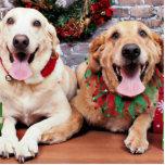 Christmas - Labrador Ally - Golden Retriever Wrigl Photo Cut Outs