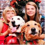 Christmas - Labrador  Ally - Golden Wrigley Photo Cutouts