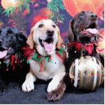 Christmas - Labrador - Dude Jag and Mocha Acrylic Cut Outs
