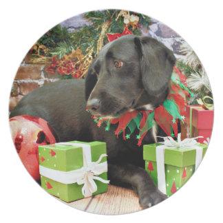 Christmas - Labrador Golden X - Abby Plates