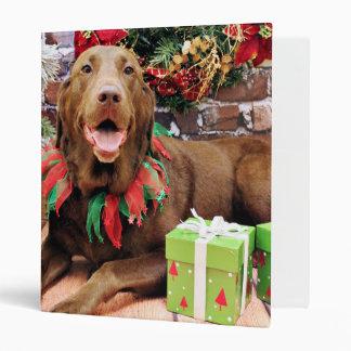 Christmas - Labrador - Lucy Binders