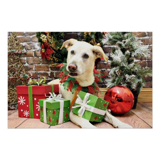 Christmas - Labrador X - Max Print