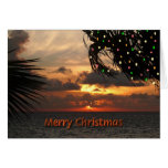 Christmas Lights in Palm Trees Greeting Card