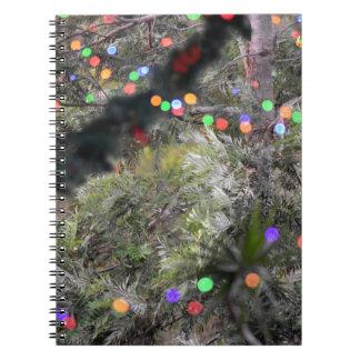 CHRISTMAS LIGHTS RURAL QUEENSLAND AUSTRALIA SPIRAL NOTEBOOK