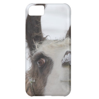 Christmas Llama with Snow on Nose for the Holidays Case For iPhone 5C