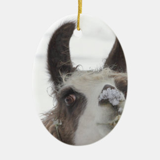 Christmas Llama with Snow on Nose for the Holidays Ceramic Ornament