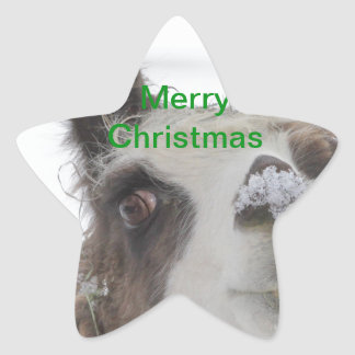 Christmas Llama with Snow on Nose for the Holidays Sticker