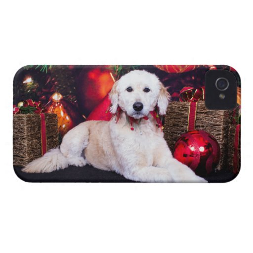 Christmas - Maggie - GoldenDoodle iPhone 4 Cases