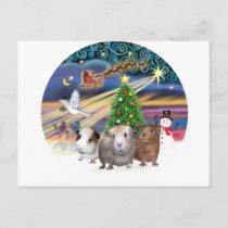 Christmas Magic - 3 Guinea Pigs Holiday Postcard