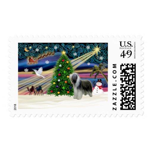Christmas Magic Bearded Collie (slate) Postage