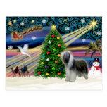 Christmas Magic Bearded Collie (slate) Postcard