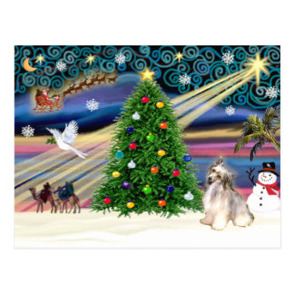 Christmas Magic Chinese Crested (Puff) Postcard