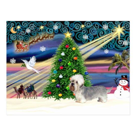 Christmas Magic Dandi Dinmont (slate) Postcard