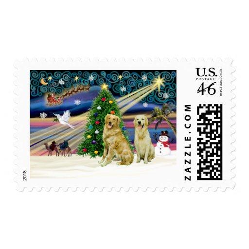 Christmas Magic Golden Retrievers (two) Stamp
