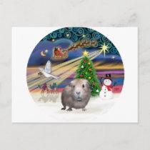 Christmas Magic - Guinea Pig #1 Holiday Postcard