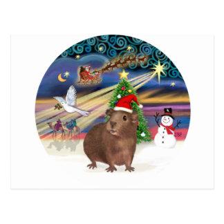 Christmas Magic - Guinea Pig #3 (hat) Postcard