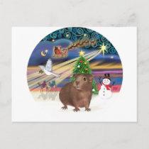 Christmas Magic - Guinea Pig #3 Holiday Postcard
