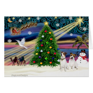 Christmas Magic Jack Russell Terrier (two) Card