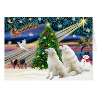 Christmas Magic Kuvasz (two) Greeting Card