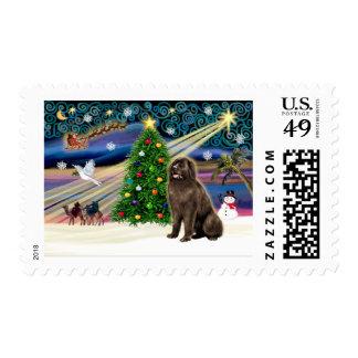Christmas Magic Newfoundland (brown) Postage Stamp