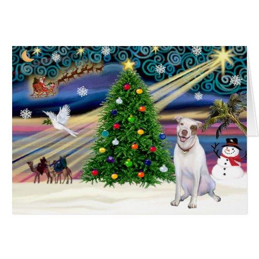 Christmas Magic Pit Bull 2 - Cards