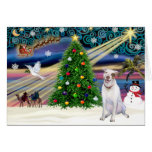 Christmas Magic Pit Bull 2 - Cards