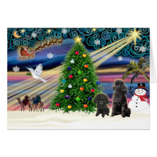 Christmas Magic Poodles (two black Toy) Greeting Card