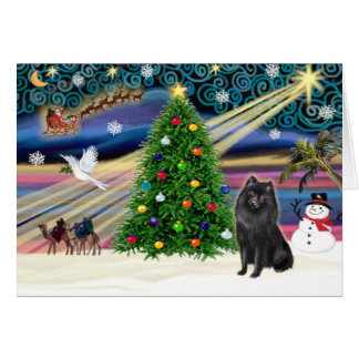 Christmas Magic Schipperke Card