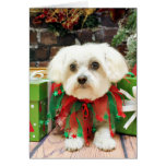Christmas - Maltese - Annie Greeting Card