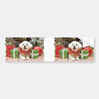 Christmas - Maltese - Miley Car Bumper Sticker