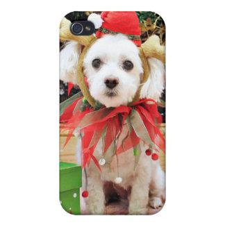 Christmas - Maltese - Sweetie iPhone 4 Cases