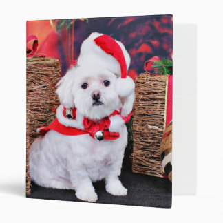 Christmas - Maltese - Zoey Binder
