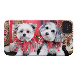 Christmas - Maltzer - Bandit - Paptese - Daisy iPhone 4 Case-Mate Case