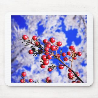 Christmas Merry Holiday Tree Ornaments celebration Mouse Pad