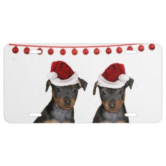 Christmas Miniature Pinschers License Plate